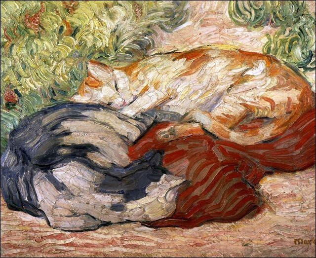 Ces chats sur un tapis rouge font une bonne sieste. Ils sont de...