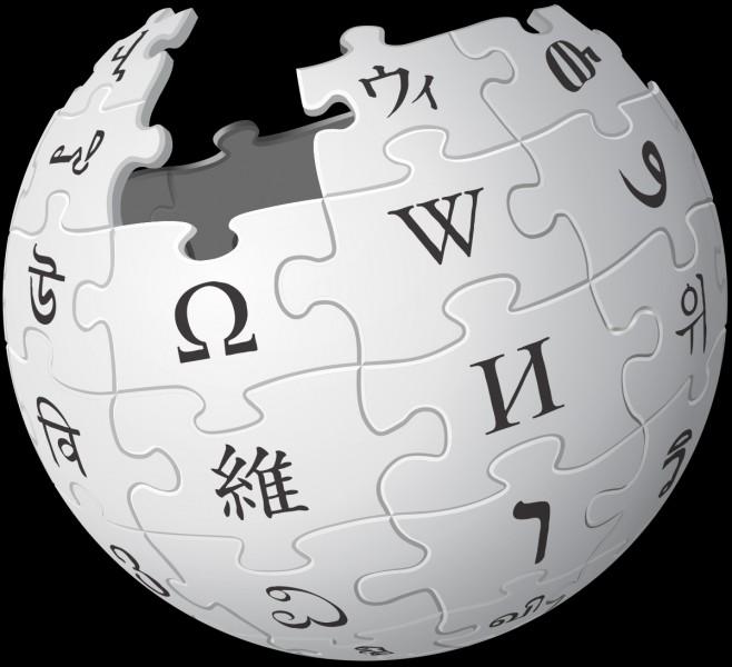 Ce logo est celui d'un site célèbre. Lequel ?