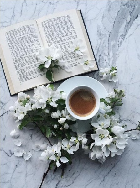 """""""La culture, c'est la mémoire de l'intelligence des autres"""", nous dit ce philosophe qui a écrit """"Propos sur le bonheur"""" !"""