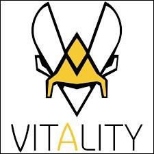 Qui sont les 3 créateurs de la team Vitality , elle aussi connu de tous ?