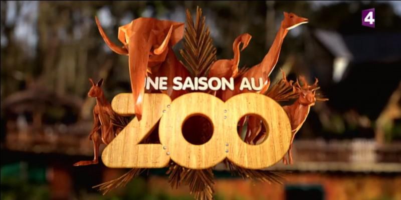 France 4 diffuse-t-elle ce programme ?