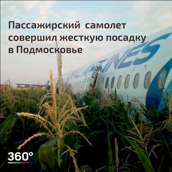 Une volée de mouettes force un Airbus à un atterrissage d'urgence dans un champ de maïs, à Moscou en :