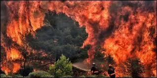 Les pompiers luttaient pour éteindre les feux de forêt sur l'île d'Eubée. Dans quel pays est-ce ?