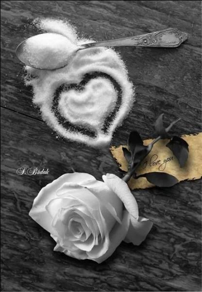 """Qui chantait """"Je t'écris comme je t'aime, soudain je pleure comme je t'aime et je t'embrasse comme je t'aime, si tu savais comme je t'aime"""" ?"""