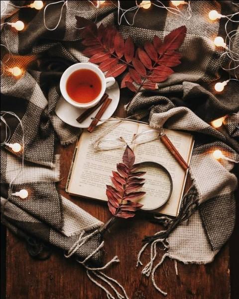 """""""Novembre"""" est une nouvelle écrite lors de l'automne 1842 et achevée le 25 octobre 1842, jamais publiée du vivant de l'auteur plus connu pour avoir écrit """"L'Éducation sentimentale"""" :"""