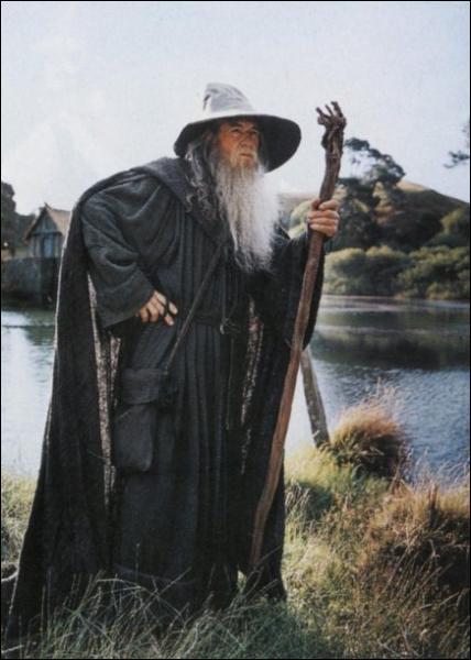 Comment s'appelle ce magicien dans le premier film ?