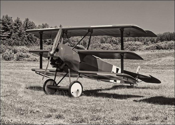 C'est pendant la Première Guerre mondiale que le Fokker Dr.I prit sa renommée.Quel surnom avait-on donné au plus célèbre des pilotes de ces 171 appareils engagés dans le conflit ?