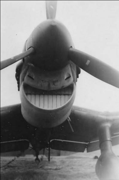 Conçu à plus de 5 700 exemplaires entre 1933 et 1944, le Ju-87 Stuka, bien que peu élégant et aérodynamiquement pauvre, se révéla un terrible bombardier en piqué.Quel pays finança son développement ?