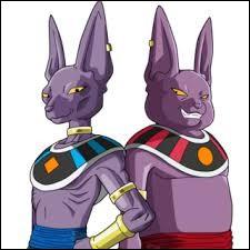 Beerus est le frère de Champa.