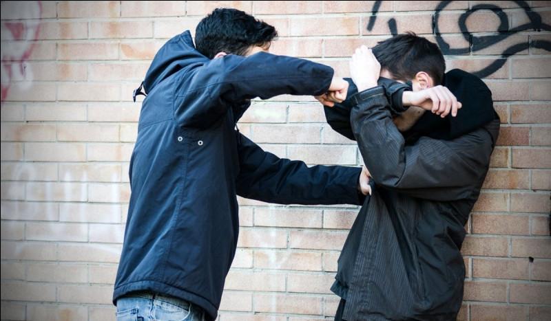 Si quelqu'un se fait agresser dans la rue, que fais-tu ?
