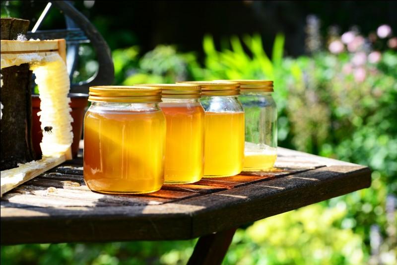 Donner du miel à un bébé de moins d'un an est dangereux.
