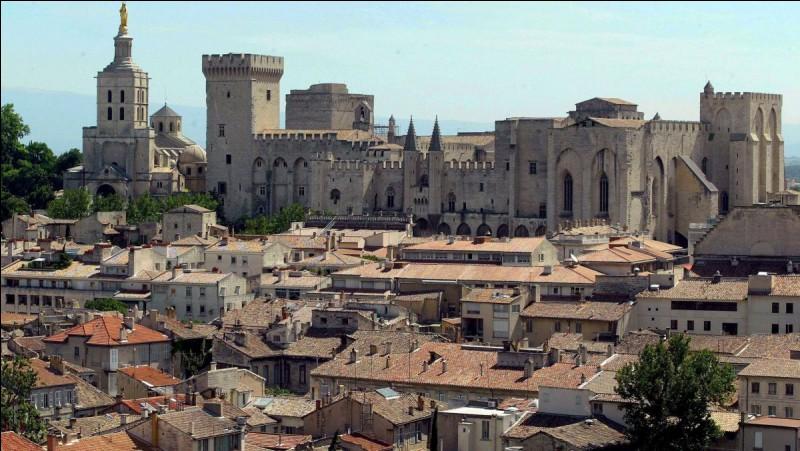 Jour 24 : aujourd'hui c'est la visite du palais des Papes. Vous l'aurez deviné je me trouve à...