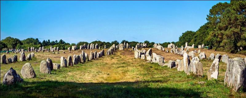 Jour 2 : je décide d'aller visiter le plus grand site mégalithique du monde. Quel train dois-je prendre ?