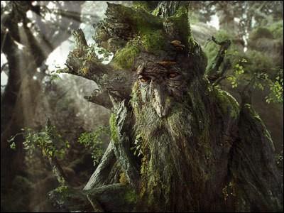Espèce : EntsFamille : Ami de Gandalf Description : Très grand, robuste et de couleur gris-vertÀ savoir : Il serait l'être le plus âgé de la Terre du Milieu Quel est ce personnage ?