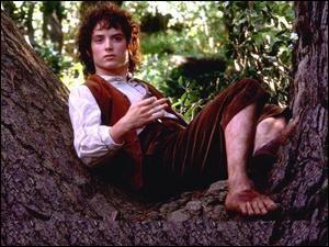 Espèce : Hobbit Famille : Fils de Drogo et de Primula Description : Petit, grands pieds et brun À savoir : A 33 ans lorsque toute l'histoire commence Quel est ce personnage ?
