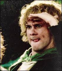 Espèce : Hobbit Famille : Mari d'Estelle BolgeurreDescription : Petit, grands pieds, cheveux bouclés À savoir : Il est passionné par les cartes et les livresQuel est ce personnage ?