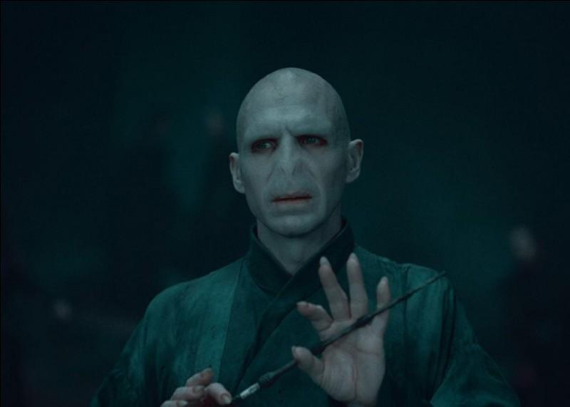 """""""Me revoilà, après tant d'années je vais enfin pouvoir me débarrasser de ce maudit bébé ... !""""De qui parle Voldemort ?"""