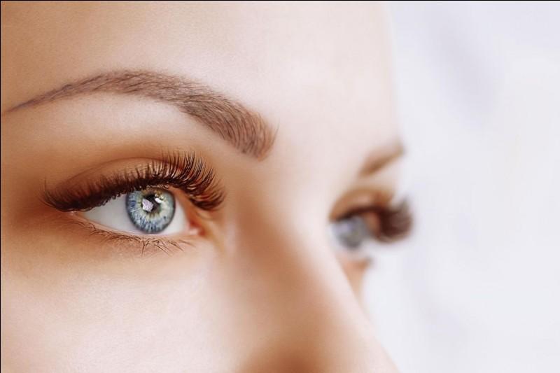 Parmi ces mots, lequel désigne une partie de l'œil ?
