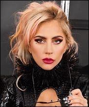 Connaissez-vous bien Lady Gaga ?