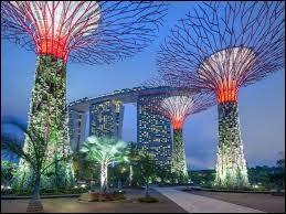 De quelle ville le Singlish est-il un dialecte ?