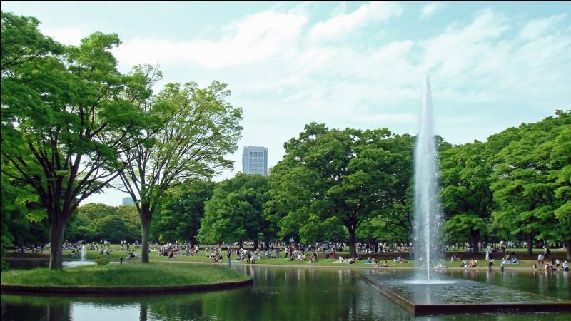 La parc Yoyogi est un grand parc abritant une piste cyclable et des magasins qui louent des vélos c'est à :