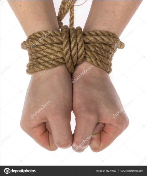 Quel sortilège utilises-tu pour couper les liens qui retiennent tes amis prisonniers ?