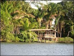 Tu voulais partir en voyage aux Caraïbes sauf que ton bateau a coulé et tu es le seul survivant. Tu es arrivé sur une île mystérieuse de l'Amazonie ! Que fais tu ?