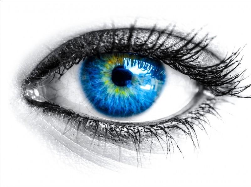 Il est moins fréquent d'avoir les yeux bleus que bruns.