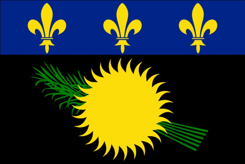 Ce drapeau est celui...