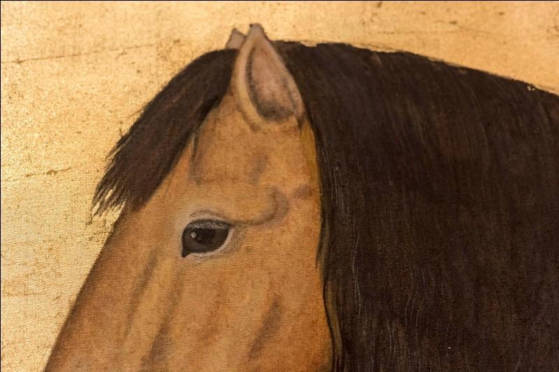 Passons de la culture générale aux termes réels d'équitation. Comment nomme-t-on les ''cheveux'' du cheval ?