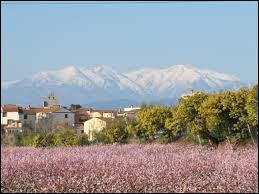 Ville d'Occitanie, Trouillas ne se situe pas ...