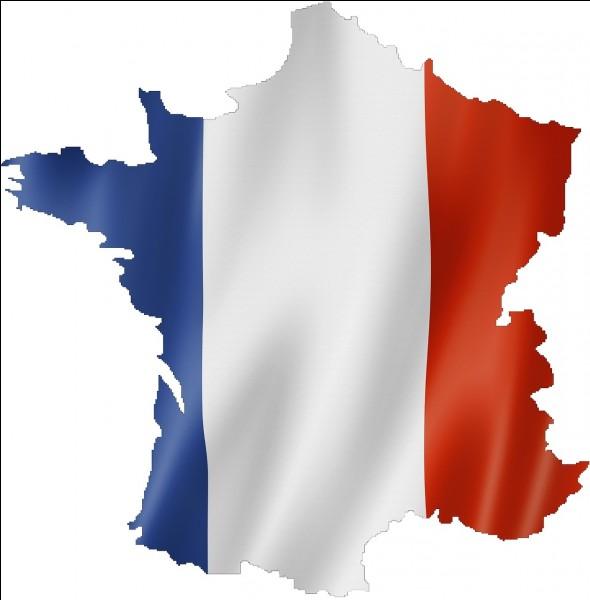 """Français - Quelle est la forme correcte du verbe """"être"""" au passé simple de l'indicatif et à la première personne du singulier ?"""