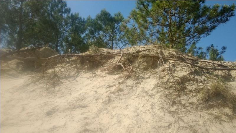 """""""Sous le sable"""" est un film interprété par Charlotte Rampling."""