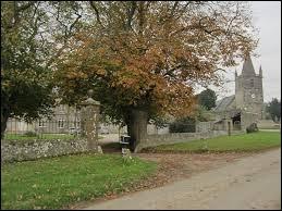 Village Manchot, Neuville-au-Plain se situe en région ...
