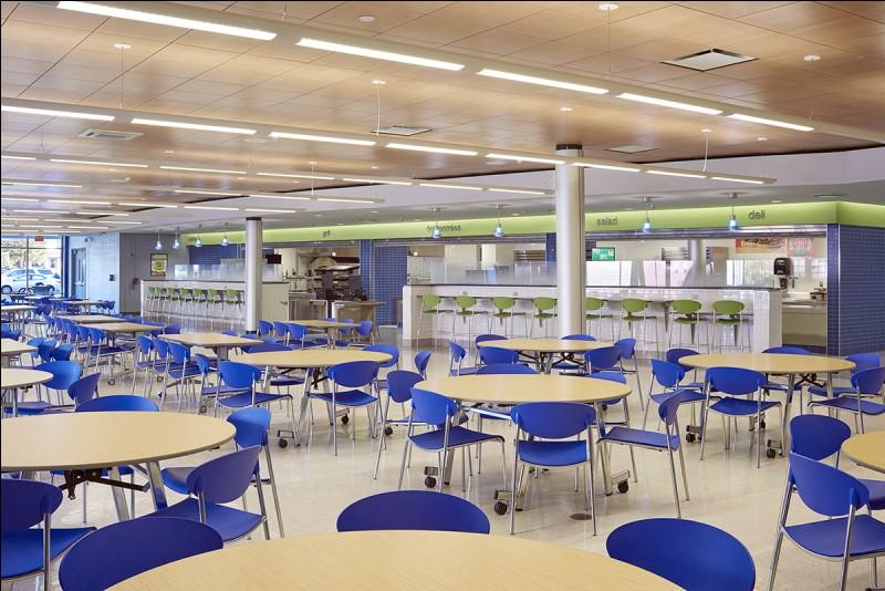 La cuisine et le réfectoire se trouvent dans ce lieu. Quelle est la couleur des chaises au premier plan ?