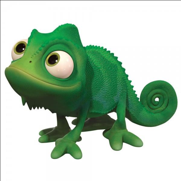"""Quel est le nom du caméléon dans """"Raiponce"""" ?"""