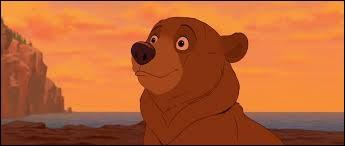 Retrouvez le nom de cet ours !