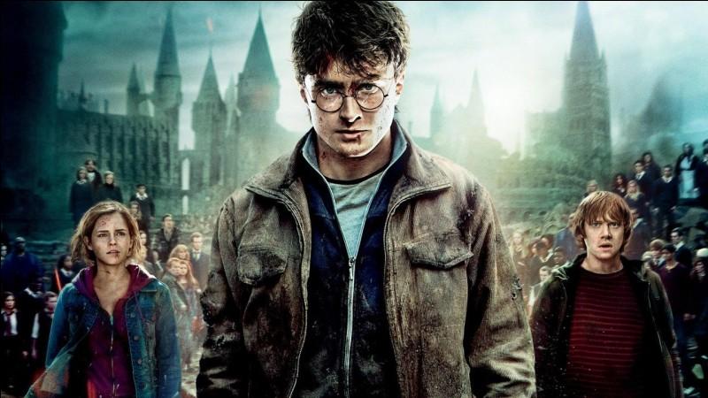 Qui ou quoi, n'est pas un Horcruxe de Voldemort ?