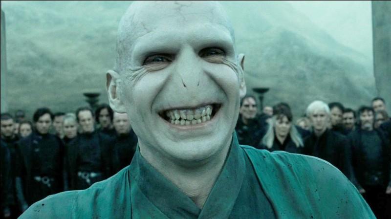 En combien de parties Voldemort a-t-il divisé son âme ?