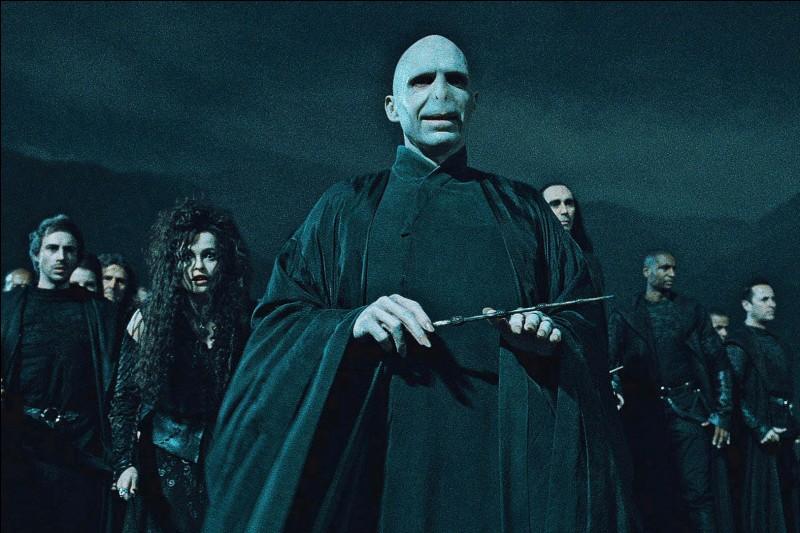 Comment s'appellent les parents de Voldemort ?