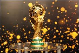 Pour qui étiez-vous lors de la dernière Coupe du monde ?