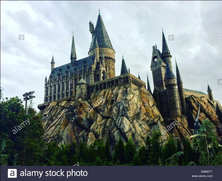 Qui amène Harry à son premier jour d'école à Poudlard ?