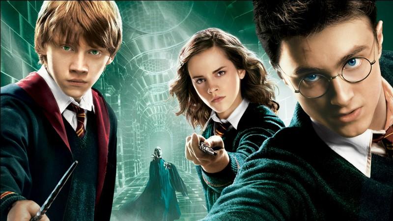 Quel est le nom des deux amis de Harry ?