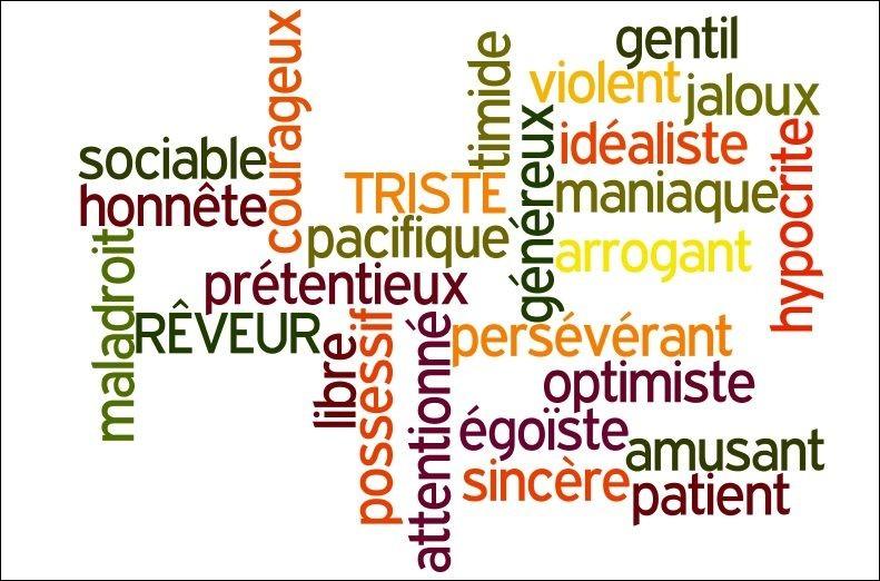 L'adjectif qui te décrit le mieux...
