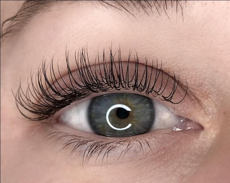 Concernant mes yeux, quels cils devrais-je choisir de poser si je souhaite les garder pendant une journée ?