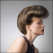 Quel est le nom de cette coiffure ?