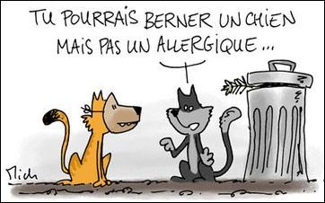 Pour Aurélie, directrice du refuge Saint Jean aux Amognes (Nièvre), c'est la goutte d'eau qui fait déborder le vase…Une personne vient abandonner son magnifique chat persan. En effet cette personne :