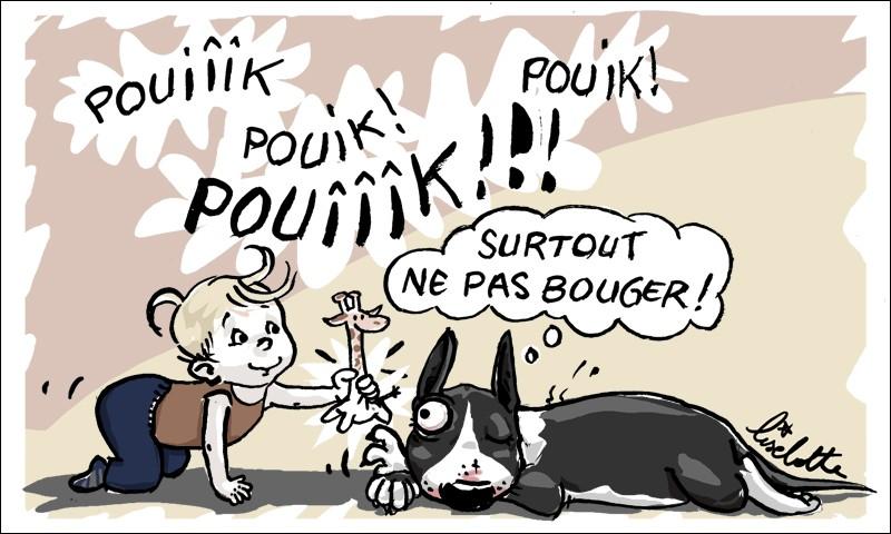 Kaiser (jeune dogue de Bordeaux) était le compagnon de jeu de Perrine, âgée de 18 mois. Mais depuis quelques jours Perrine se retrouve seule puisque ses parents ont décidé de se séparer de Kaiser car :