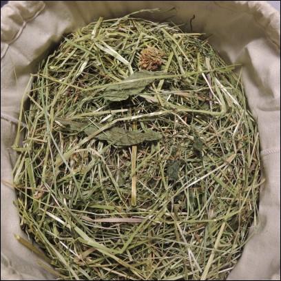 Quel foin est le mieux adapté à un lapin souffrant de problèmes urinaires ?