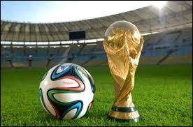 La Coupe du monde de football 2014 a été remportée par le Brésil.